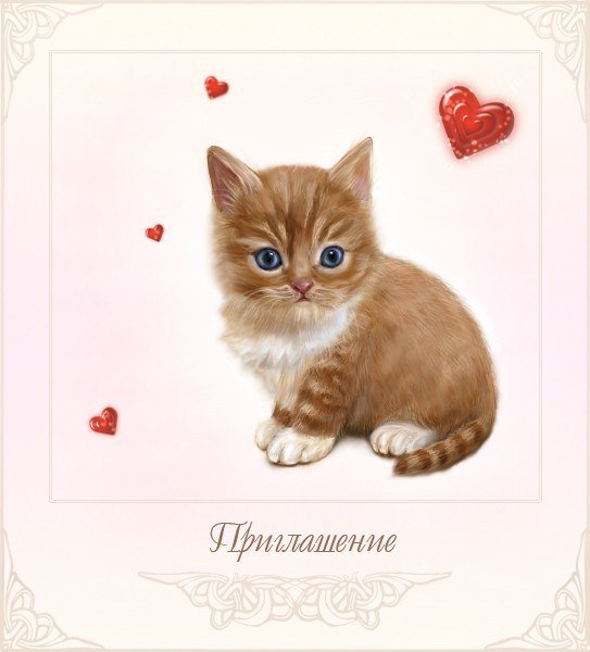 Открытки котенку 6 мессуев