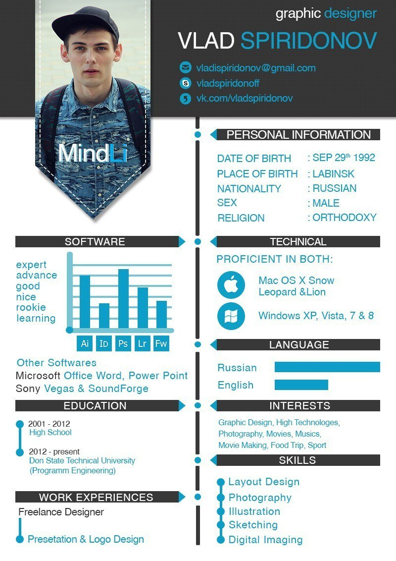 Infographic resume engineer