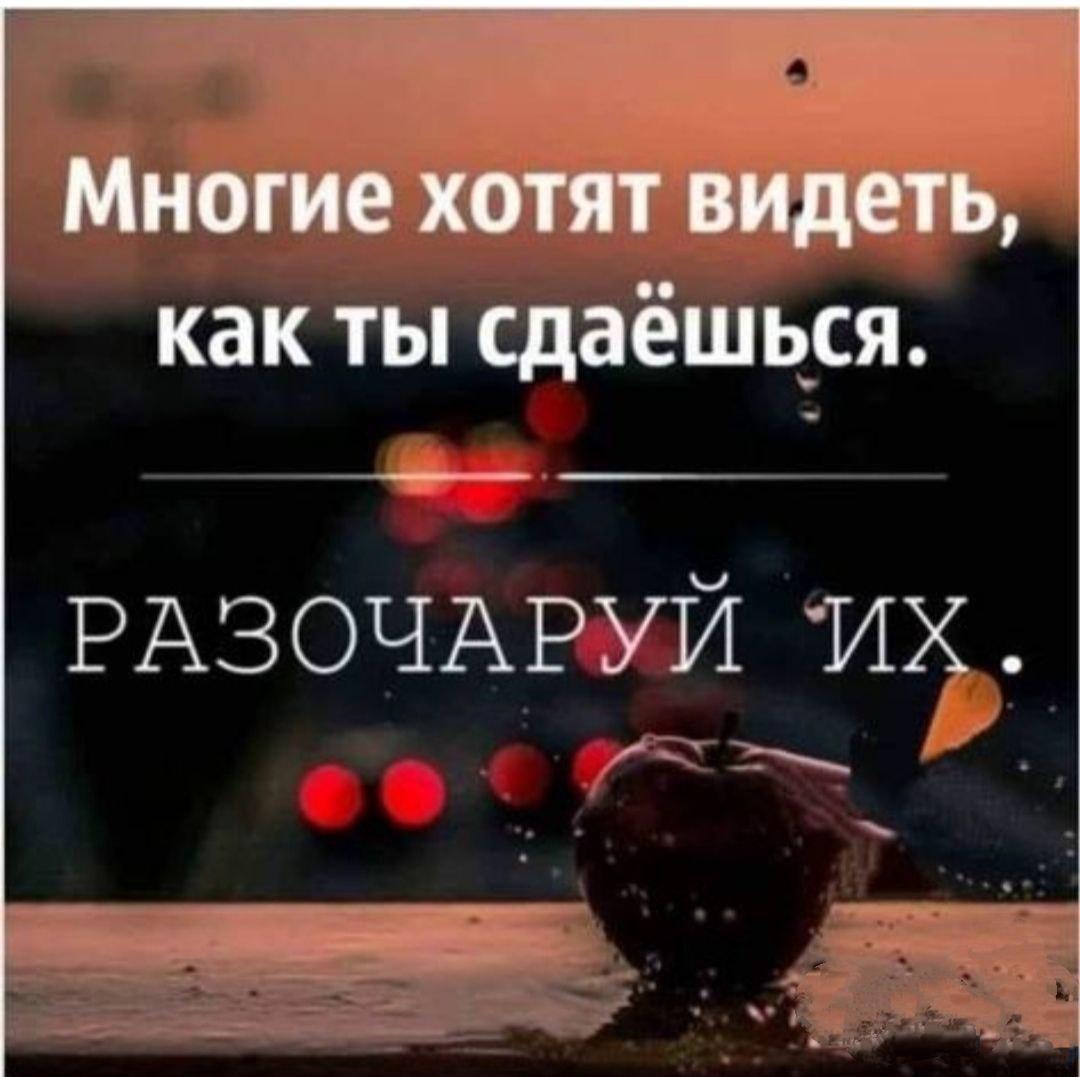 Вакансия помощник бухгалтера без опыта работы в москве удаленно удалённая работа для разработчика сайта