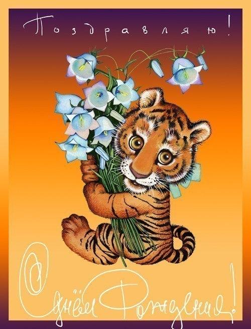 Мой тигр открытки, зенита национальные